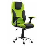 Scaunul-ergonomic-de-birou-OFF-308-verde 1